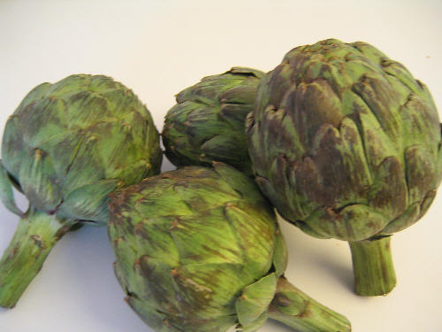 Fresh Artichoks Ready to be stuffed from pizzatherapy.com